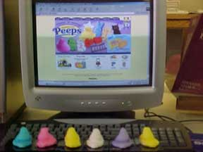 photo of Peeps looking at Peeps website